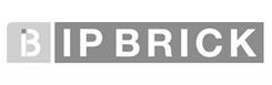 logo_ipbrick_gris