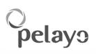 logo_pelayo_gris